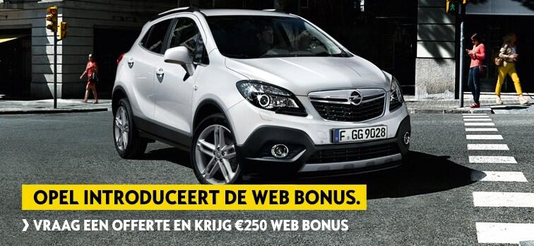 Web Bonus